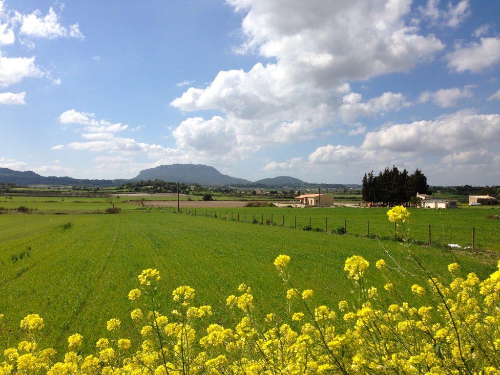 Het weer in maart op mallorca